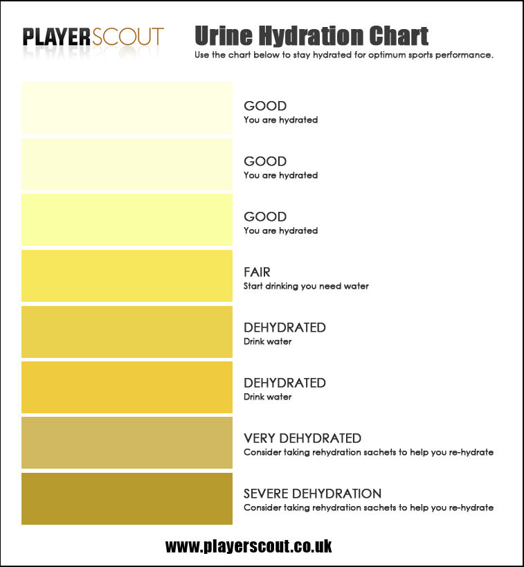 Hydration chart for players